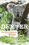 Dexter; The Courageous Koala