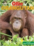 Ollie the Orangutang